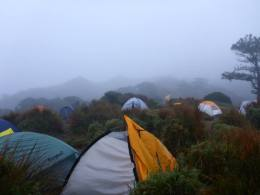 MT PULAG CLIMB PROMO PACKAGES AT 1,750/PERSON-ALL IN