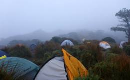 MT PULAG CLIMB PROMO PACKAGES-STARTING PHP 1,999-2,600/PERSON
